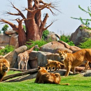 El zoológico del s. XXI