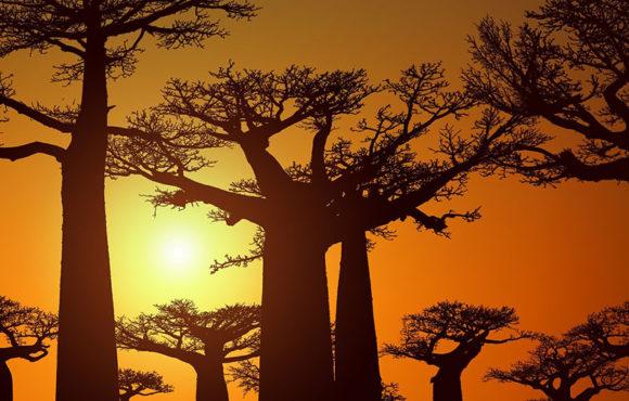Madagascar, destino turístico en desarrollo