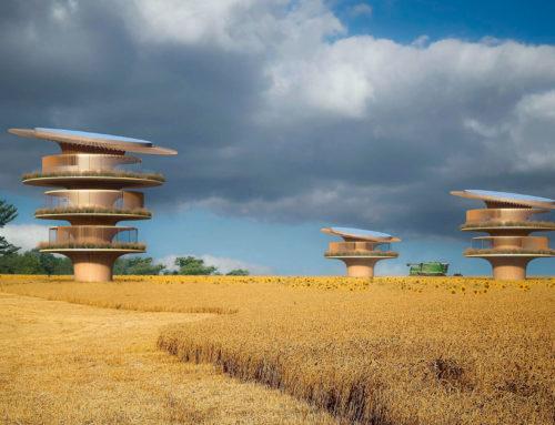 Casa girasol, arquitectura y naturaleza